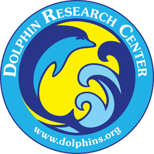 dolphin-research-center-logo