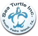 sea-turtle-inc-logo