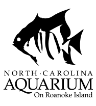 roanoke-island-logo